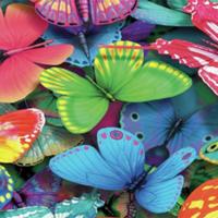 Vibracijski leptir za prvoklasnu stimulaciju